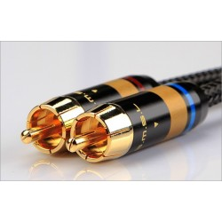 SMSL W6 Câble de modulation RCA plaqué Or Oyaide OFC (La paire)