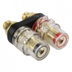 W&M Audio BB-05 Borniers double isolés avec plaque de maintient plaqué Or 6mm