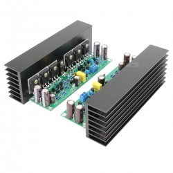 LJ L15 MOSFET Modules Amplificateur 150W 8 ohm Mono (La paire)