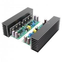 LJ L15 MOSFET Modules Amplificateur 150W 8 ohm Mono (La paire)