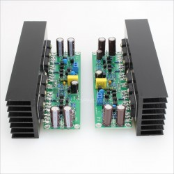 LJ L15 Amplifier boards 150W 8 ohm mono (Pair)