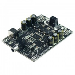 WONDOM AA-AB31211 Module Amplificateur TPA3118 Class D Mono 60 Watts 4 Ohms