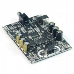 Sure Module Amplificateur TPA3118 Class D Mono 60 Watt 4 Ohm