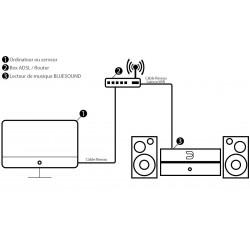 BLUESOUND POWERNODE 2 Lecteur Reseau Hi-Fi 32bits/192KHz 2X60W Blanc