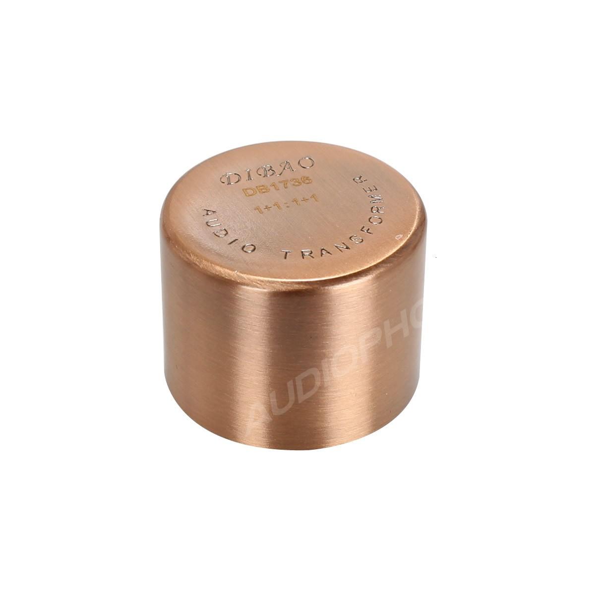 DIBAO DB1736 Transformateur audio universel 1+1 : 1+1 symétriseur