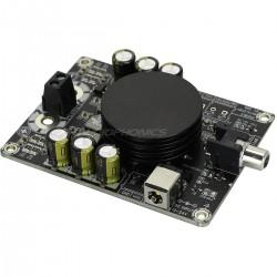WONDOM AA-AB31184 Module Amplificateur Class D Mono 100 Watt 2 Ohm