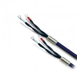 OYAIDE OR-800A Câble Haut Parleur 2.5m
