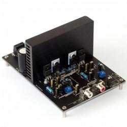 SURE AA-AB32321 IR S2092 Module amplificateur stéréo class D 2x125W 8Ohms