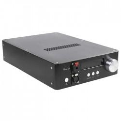 AUDIO-GD NFB-29 DAC ES9028Pro DSD / DXD 32bit / 384kHz Amanero HDMI TCXO