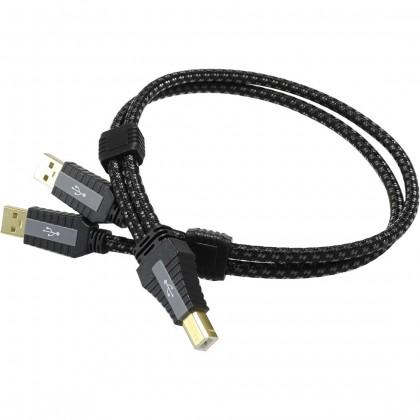 PANGEA Premier XL Câble USB-A Male/USB-B Male 2.0 Cardas Copper plaqué Or 0.5m