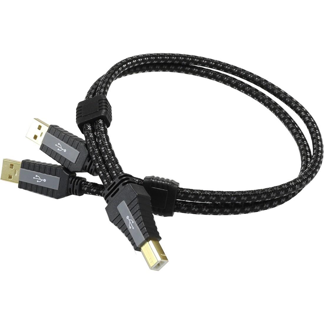 PANGEA Premier XL Câble USB-A Male/USB-B Male 2.0 Cardas Copper plaqué Or 1m