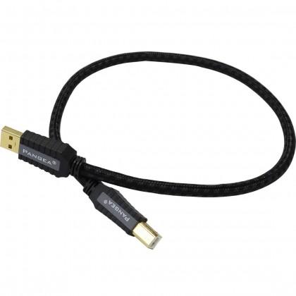 PANGEA Premier SE Câble USB-A Male/USB-B Male 2.0 Cardas Copper plaqué Or 1m