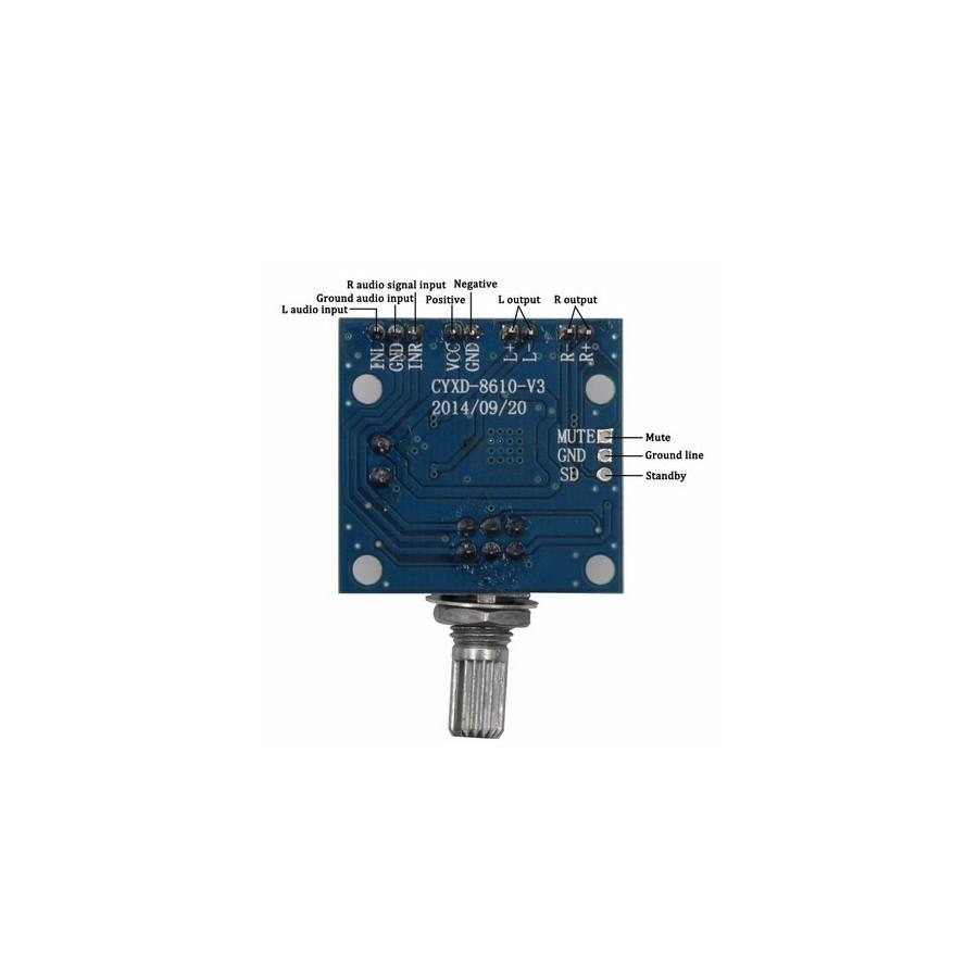FX-AUDIO M-DIY PAM8610 Class D Digital Audio Amplifier