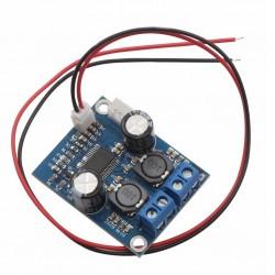 FX-AUDIO TPA3118 Module Amplificateur Mono Class D Mono 60 Watts 4 Ohms