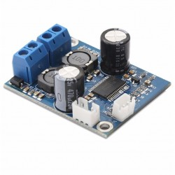 FX-AUDIO M-DIY-60W TPA3118 Module Amplificateur Class D Mono 60 Watts 4 Ohms