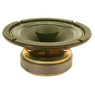 Large bande Davis Acoustics 165MRP 165mm