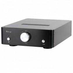 AUDIO-GD R2R 2 DAC DSP FPGA USB AMANERO HDMI I2S 24bit 384Khz TCXO