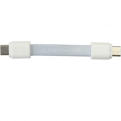 Câble USB plat USB-C Male / USB-B Male 2.0 10cm blanc