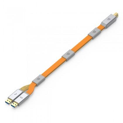 IFI AUDIO GEMINI3.0 Câble USB 3.0 Alimentation/Audio Isolés Quadruple Blindage Filtre RF 1.5m