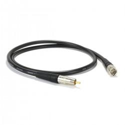 CANARE Cordon numérique coaxial 75ohm - BNC-RCA 1.0m