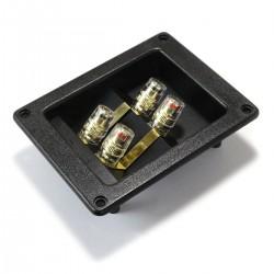 Bornier Encastré Isolé pour Bi-Câblage Enceintes 95x75mm