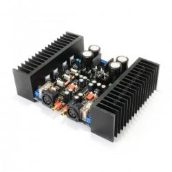Module Amplificateur Mono LM1875 2x80W / 8 Ohm (La paire)