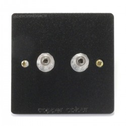CC E-SERIES Wall Plate Wiring Kit with 2 Binding Post Aluminium Black