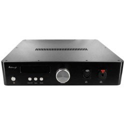 AUDIO-GD R-28 2020 EDITION DAC R2R DSD Natif Amanero / Preamplifier / Headphone amplifier