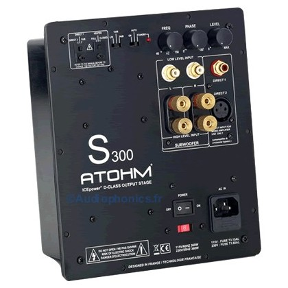 Module amplification subwoofer ATOHM S300 ICEPOWER