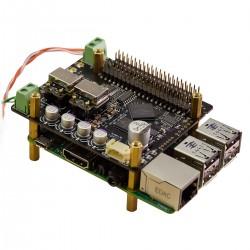 IAN CANADA FIFOPI ULTIMATE Reclocker Module FIFO PCM 32bit 768kHz DSD1024 DoP