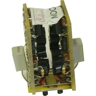 AUDIO-GD OPA-EARTH Dual Discret OPA (Unit)