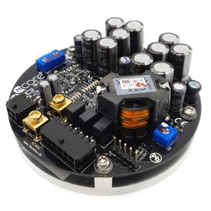 HYPEX NC400 NCore Module amplificateur mono 400W