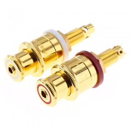 WBT-0702.01 Borniers pour haut parleur plaqué Or (La paire)