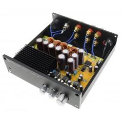 AUDIOPHONICS TAS-SW45 Amplificateur 2.1 TAS5630 Class D 2x 45W + 175W 4 Ohm Noir
