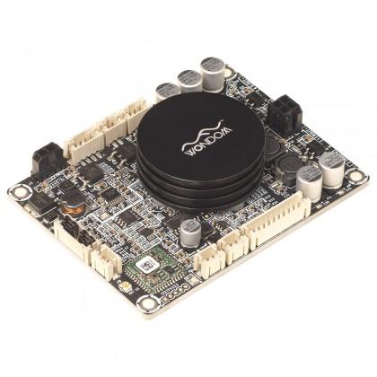 WONDOM AA-JA31182 JAB2-100 Module Amplificateur Mono Class D TPA3116 Bluetooth 4.0 100W 2 Ohm