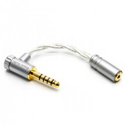 IBASSO CA04 Adaptateur Symétrique Jack 4.4mm Mâle vers Jack 2.5mm Femelle Plaqué Or