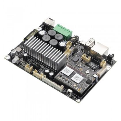 ARYLIC UP2STREAM AMP MONO Amplifier Board WiFi Bluetooth 5.0 60W 4 Ohm