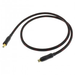 Câble USB-B vers USB-A Cuivre Plaqué Or Blindé 1m