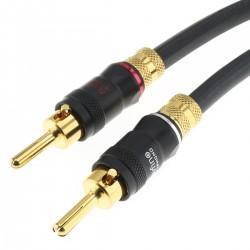 AUDIOPHONICS QUARTZ Câbles d'Enceintes Bananes Cuivre OCC Plaqué Or 2x4mm² 5m (La paire)