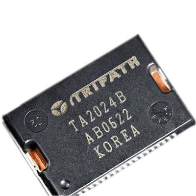 TRIPATH TA2024 Puce d'amplification Class-T 2x15W