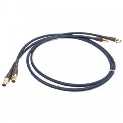 AUDIO-GD Câble de Modulation ACSS 1m (Nouveau standard) (La paire)