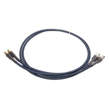 Audio-GD Câble d'interconnexion ACSS (Ancien vers Nouveau) 1m