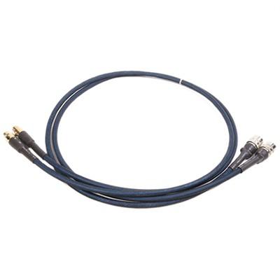 AUDIO-GD Câble de Modulation ACSS 1m (Ancien vers Nouveau) (La paire)