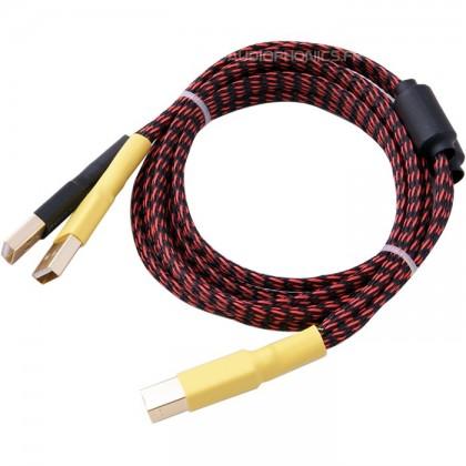 Câble adaptateur pour alimentation 2x USB-A vers USB-B 1m