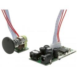 Dayton Audio DTA-2 Class T Digital Audio Amplifier Module