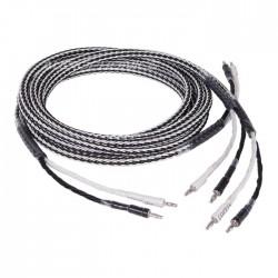CC SP-3 Câbles d'enceintes Cuivre OFC 3m (La paire)