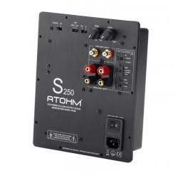 ATOHM S250 ICE POWER Amplifier module Class-D Subwoofer