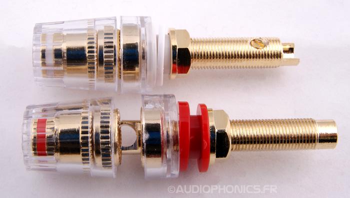 https://www.audiophonics.fr/images2/3816/3816_borniers_paire_3.jpg