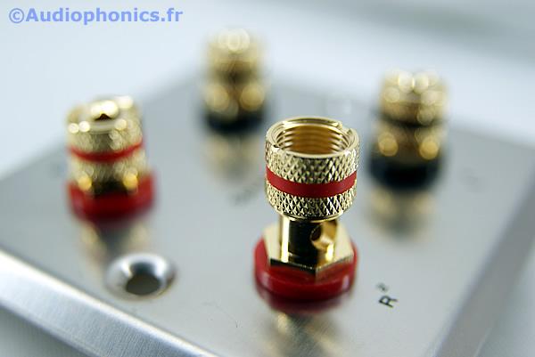 https://www.audiophonics.fr/images2/4747_PLAQUE-MURALE-4HP_3.jpg