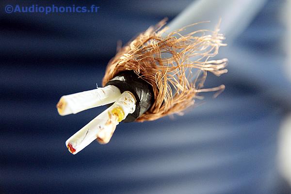 https://www.audiophonics.fr/images2/4889_FURUTECH_FP-3TS20_1.jpg